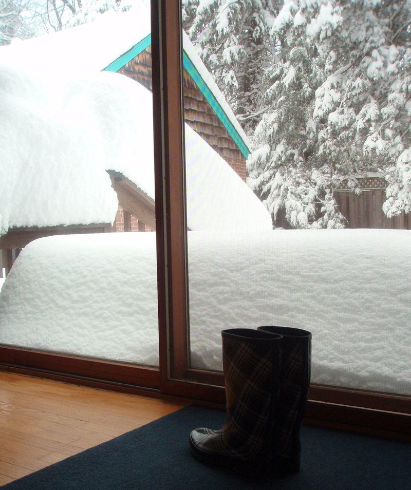 Snow 6F2010